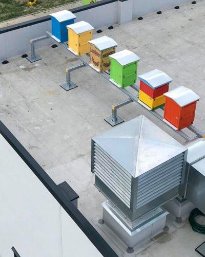 Sześć uli na dachu firmy - Pasieka Serafin
