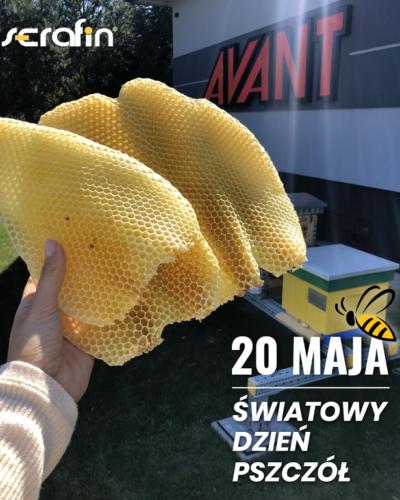 20 maja - Dzień Pszczół!