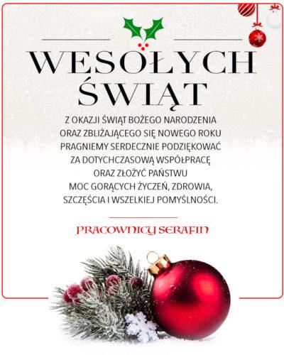 Wesołych Świąt Bożego Narodzenia i szczęśliwego Nowego Roku 2021